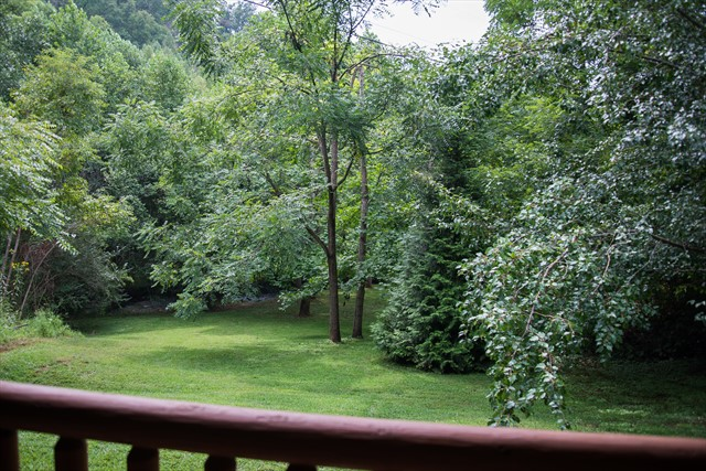 Secluded veiw from the deck