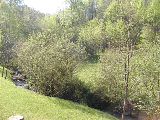 The veiw off the deck of the creek and the meadow beyond