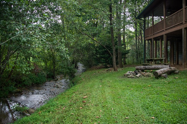 The back yard with the creek just 20' away