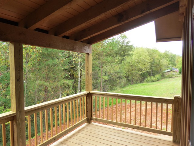 From the back porch, the view or the wooded back yard